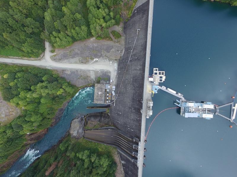 Thủy điện có phải là nguyên nhân chủ yếu chiếm rừng Tây Nguyên?