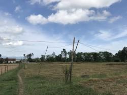 Nông thôn mới: Lưới điện
