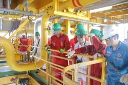 Mỏ Cá Tầm đạt mốc 5 triệu thùng dầu sau gần 19 tháng đưa vào khai thác