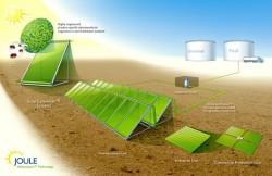 Chiến lược quốc gia về tăng trưởng xanh
