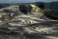 Giá than thế giới giảm sâu nhất trong 12 năm