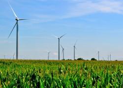 Đề nghị Bỉ hỗ trợ Việt Nam phát triển năng lượng tái tạo