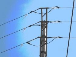 Lưới điện HTX Thành Tâm qua bão tố