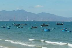 Xác định nguyên nhân cá chết gần khu vực Điện lực Vĩnh Tân