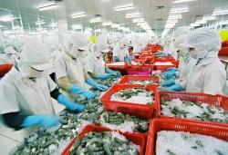 Đề xuất định mức tiêu hao năng lượng cho ngành chế biến thủy sản