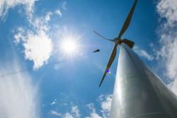 Phát triển năng lượng sạch ở Bạc Liêu: Tiềm năng và thách thức
