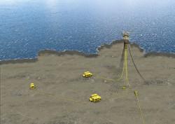 Có thể đón khí từ mỏ Cá Voi Xanh vào năm 2023