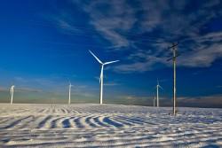 Bình Thuận đề xuất chính sách ưu đãi cho điện gió
