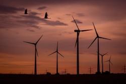 Sóc Trăng đề nghị điều chỉnh quy hoạch điện gió