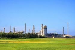 Tình hình hoạt động của Công ty CP Lọc hóa dầu Bình Sơn