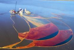 Ứng dụng công nghệ Biofilm xử lý ô nhiễm dầu mỏ