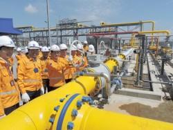 PV GAS vượt lên Top đầu trong bối cảnh giá dầu thấp