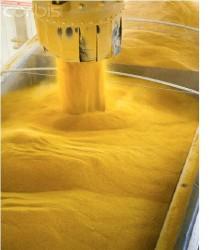 Nhiên liệu sinh học và hiện trạng sản xuất, sử dụng ở Việt Nam