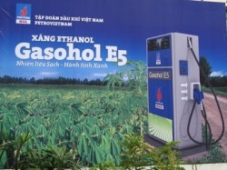Phát triển nhiên liệu sinh học: Cần có những chính sách ưu tiên