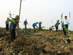 Ngành Than đẩy mạnh công tác bảo vệ môi trường