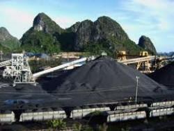 Nghiên cứu tuyển than cấp hạt mịn độ tro cao mỏ than Hà Tu bằng thiết bị tuyển than tầng sôi