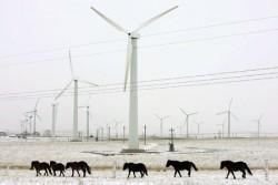 Tranh cãi xung quanh chiến lược phát triển ngành năng lượng gió của Anh