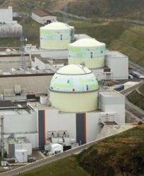 Chính quyền địa phương Nhật ủng hộ tái khởi động điện hạt nhân