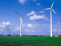 Chuẩn bị xây dựng Trung tâm điện gió Đồng bằng sông Cửu Long