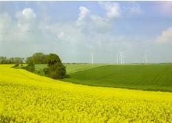 Phản biện, kiến nghị giải pháp phát triển bền vững nguồn năng lượng tái tạo Việt Nam (Kỳ 2)