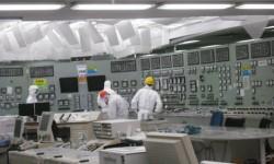 UNSCEAR công bố 6 công nhân Fukushima tử vong không phải vì phóng xạ