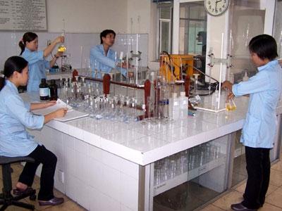 Trạm giám định than Cẩm Phả, hoàn thành tốt các nhiệm vụ năm 2012