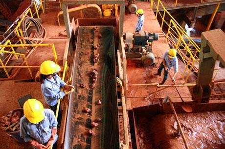Sớm nghiên cứu hoàn thiện quy trình công nghệ xử lý bùn đỏ