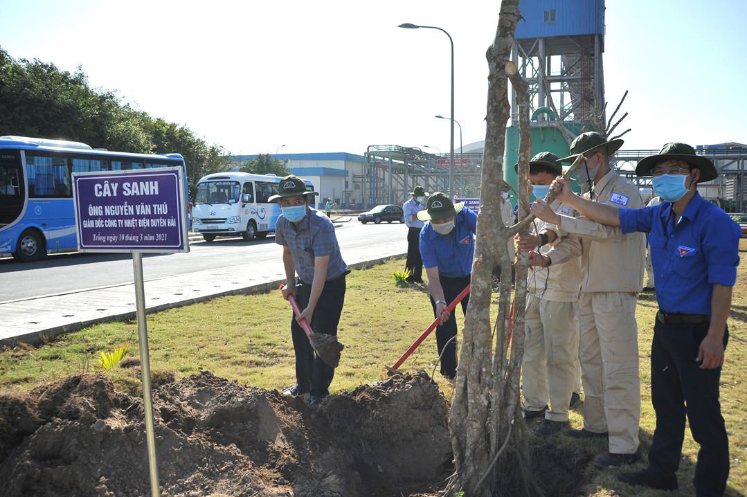 EVNGENCO1 tổ chức 'Tết trồng cây' tại Nhiệt điện Duyên Hải