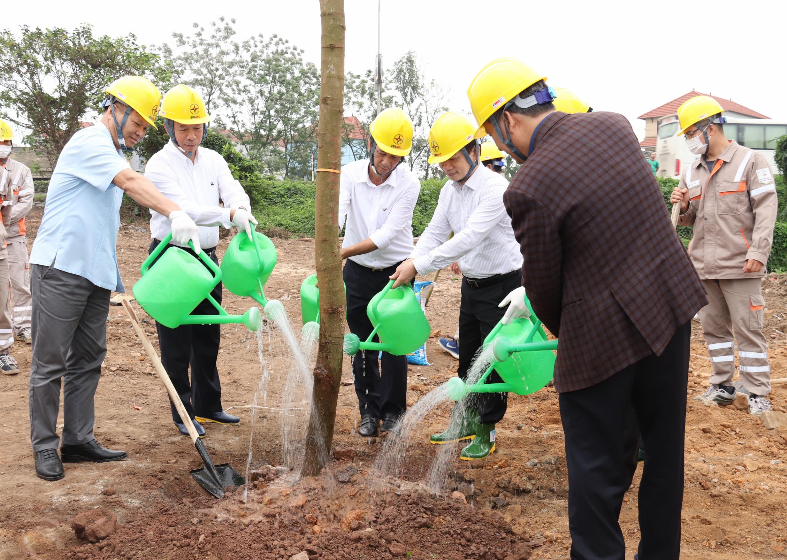 EVN trồng cây xanh tại Khu di tích Quốc gia đặc biệt Tân Trào