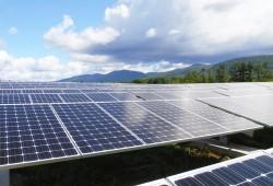 Chấp thuận đầu tư Dự án điện Mặt trời Thanh Hóa 1