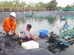 Chính quyền các tỉnh phía Nam đánh giá cao hoạt động điện lực của EVNSPC