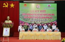 TKV hỗ trợ tiêu thụ gần 200 tấn vải thiều cho nông dân Bắc Giang