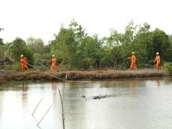 PC Thanh Hóa nỗ lực đưa điện về nông thôn