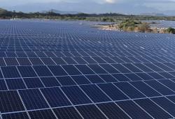 Chuẩn bị vận hành thương mại dự án điện mặt trời Phước Thái 1