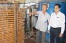 Hiệu quả tiết kiệm điện nhờ tránh giờ cao điểm của hộ sản xuất nước đá