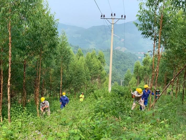 Tạo sự đồng thuận của người dân trong bảo vệ hành lang lưới điện