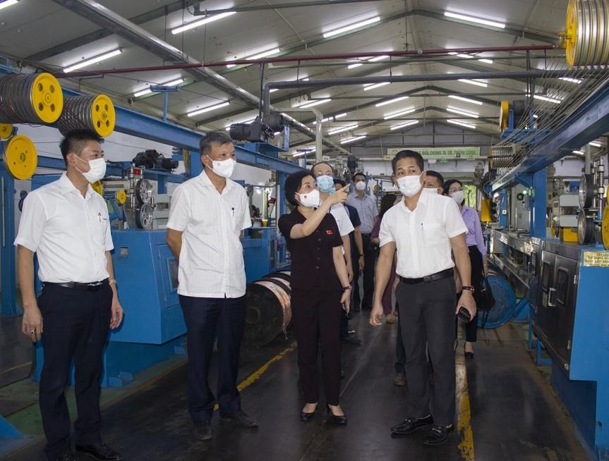 CADI-SUN duy trì tốt việc làm, ổn định thu nhập cho người lao động