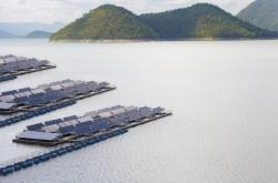 Sẽ có dự án năng lượng mặt trời trên hồ Thác Bà