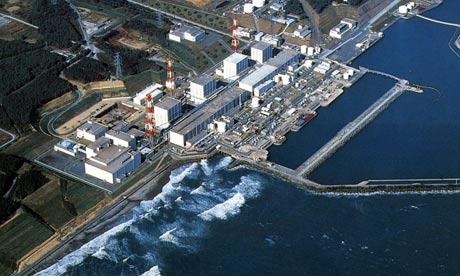 Nhà máy điện hạt nhân Fukushima lại gặp sự cố vì... chuột