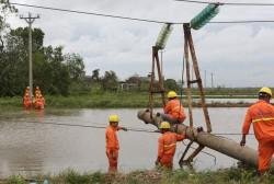 Tổng kết thiệt hại của ngành điện sau bão số 1