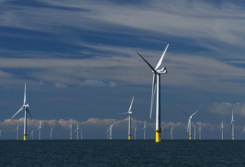 PNE muốn đầu tư dự án Công viên điện gió ngoài khơi ở Bình Định