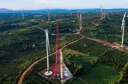 Lo ngại của nhà đầu tư về quy định 'bổ sung điều kiện' công nhận COD điện gió