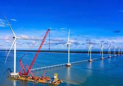 Bộ Công Thương sẽ xem xét việc chuyển tiếp các dự án điện gió
