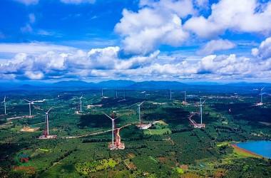 Cơ cấu nguồn năng lượng tái tạo trong Dự thảo Quy hoạch điện VIII (sau rà soát)