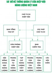 Sơ đồ hệ thống quản lý Hiệp hội Năng lượng Việt Nam