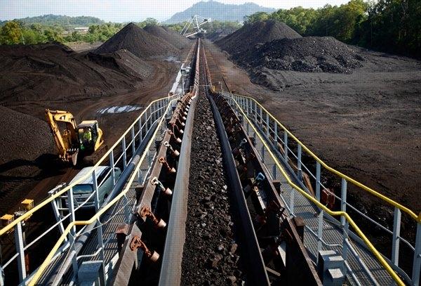Giá bán than cho sản xuất xi măng, phân bón, giấy, hộ lẻ